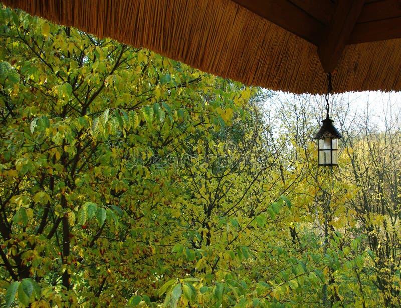 Uitstekend dak en kleurrijke de herfstbomen op de achtergrond royalty-vrije stock foto's