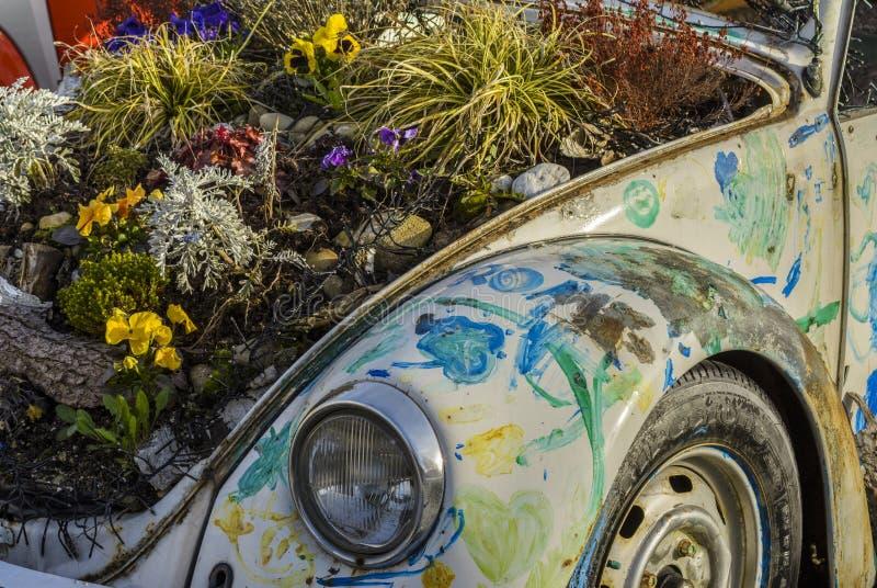 Uitstekend die Volkswagen Beetle, met de lentebloemen wordt verfraaid stock foto