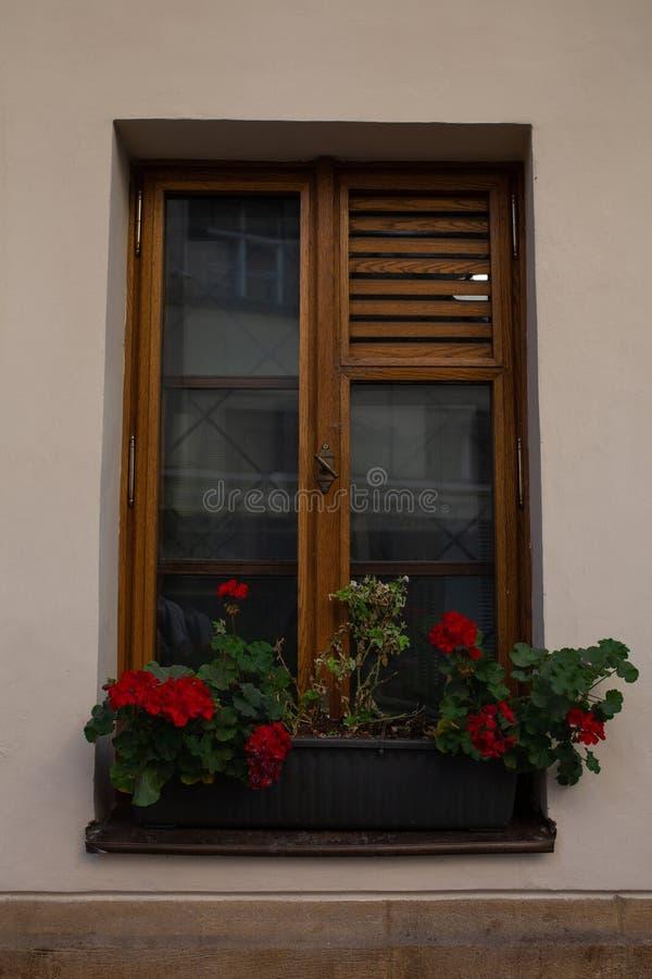 Uitstekend houten venster met jaloezie en bloemen buiten ruimte royalty-vrije stock fotografie