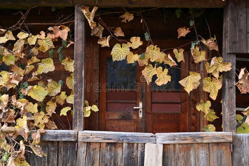 Uitstekend huis met wijngaarden in Maramures stock fotografie
