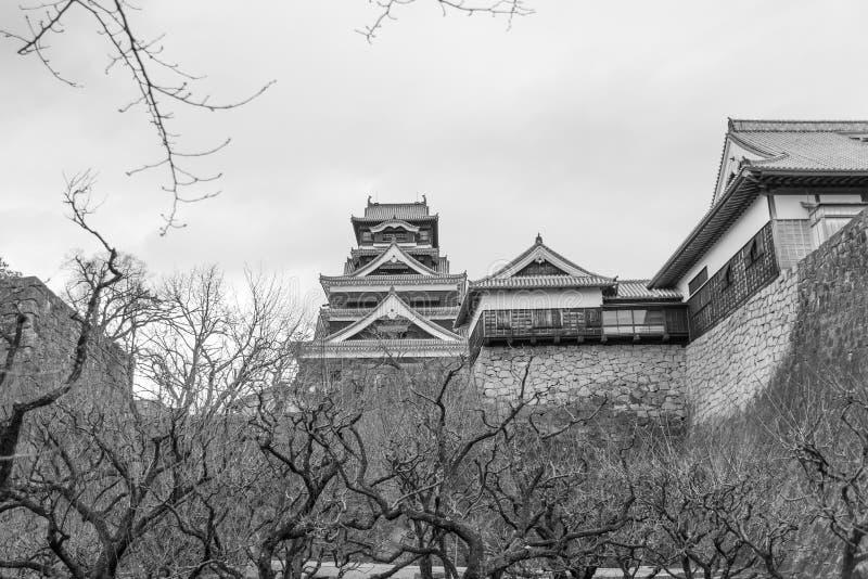 Uitstekend kasteel van Japan stock foto's