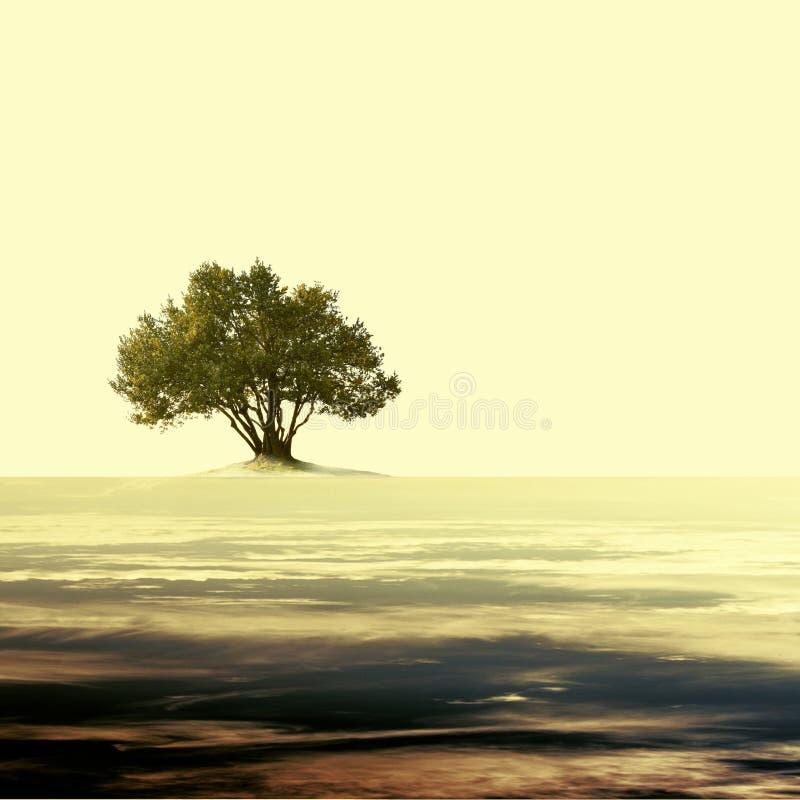 Uitstekend leeg landschap met enige olijfboom royalty-vrije stock afbeeldingen