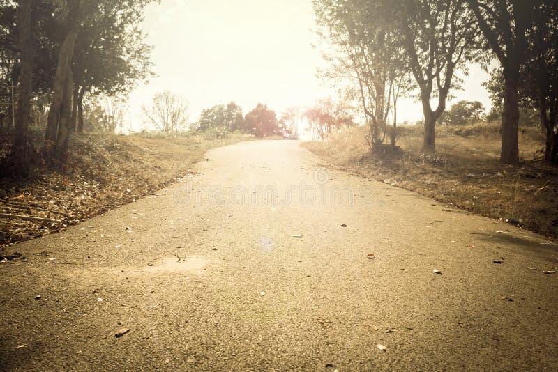 Uitstekend licht van landweg. stock foto