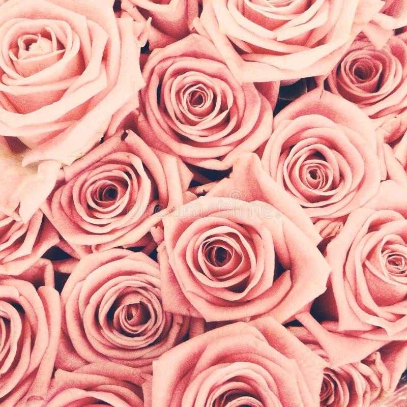Uitstekend rozenboeket stock afbeeldingen