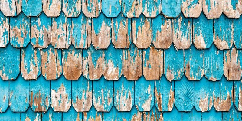 Uitstekend Turkoois Hout die, Patagonië, Chili Commissie stock afbeelding