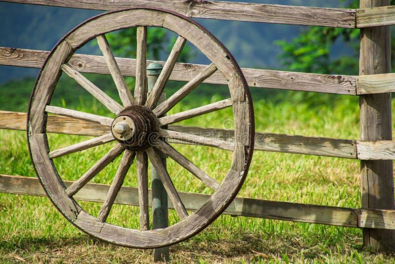 Uitstekend wagenwiel op oude houten omheining stock foto