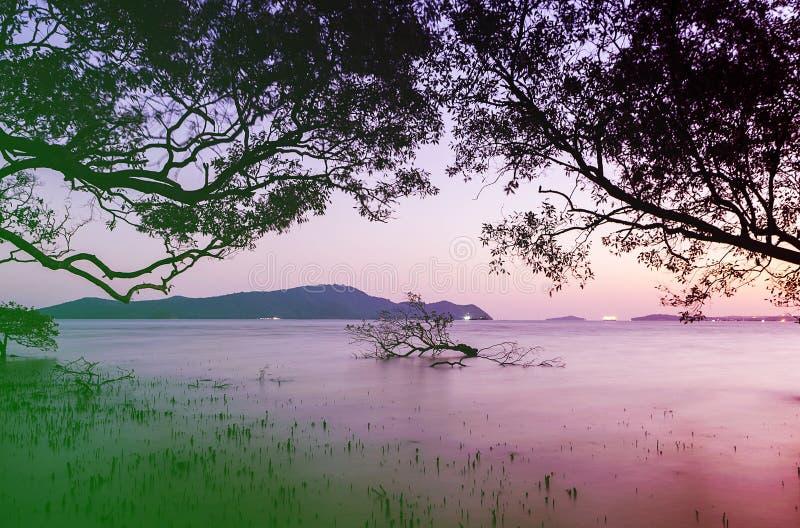 Uitstekend zeegezicht kleurrijk met kleur van zonsondergang in schemering stock afbeeldingen