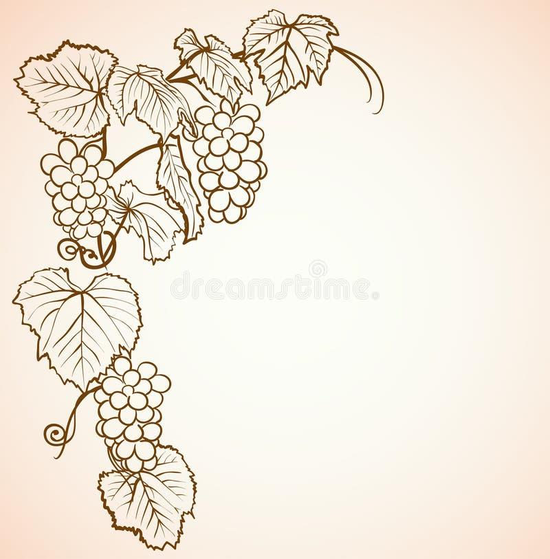 Uitstekende achtergrond met druiven stock illustratie