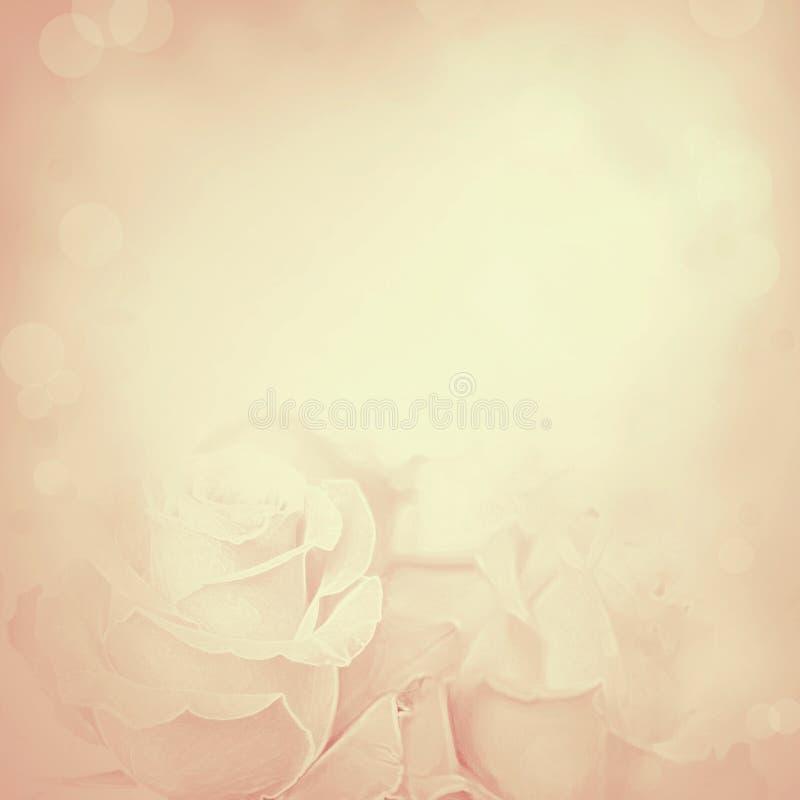 Uitstekende achtergrond met Roze bloemen royalty-vrije stock fotografie