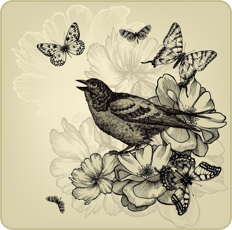 Download Uitstekende Achtergrond Met Vogels, Rozen En Butterfli Vector Illustratie - Illustratie bestaande uit decoratief, achtergrond: 29504124