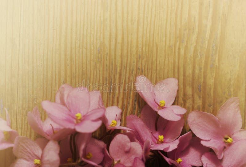 Uitstekende bloemenachtergrond Boeket van roze violette bloemen op een oude houten raad Nevelige zonnige ochtend stock fotografie