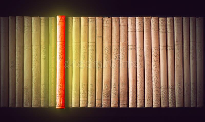 Uitstekende boeken stock foto's