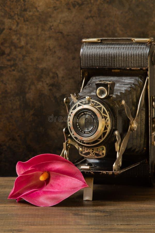 Uitstekende camera en lelie royalty-vrije stock foto's