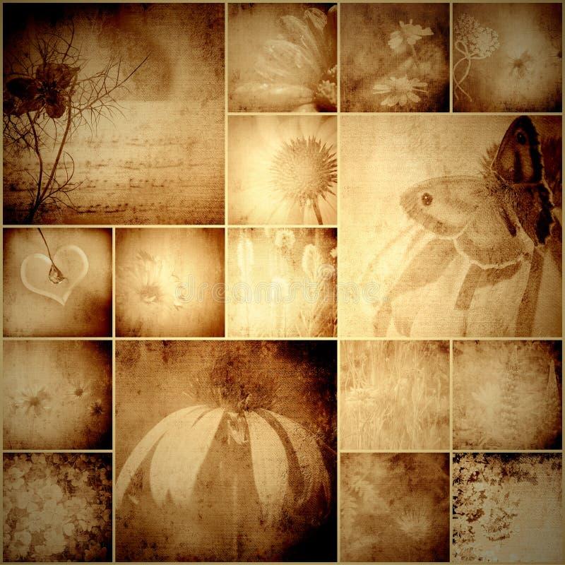Uitstekende collagebloemen en vlinder royalty-vrije illustratie