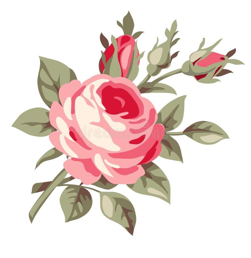 Uitstekende decoratief nam toe Vector bloemen vector illustratie