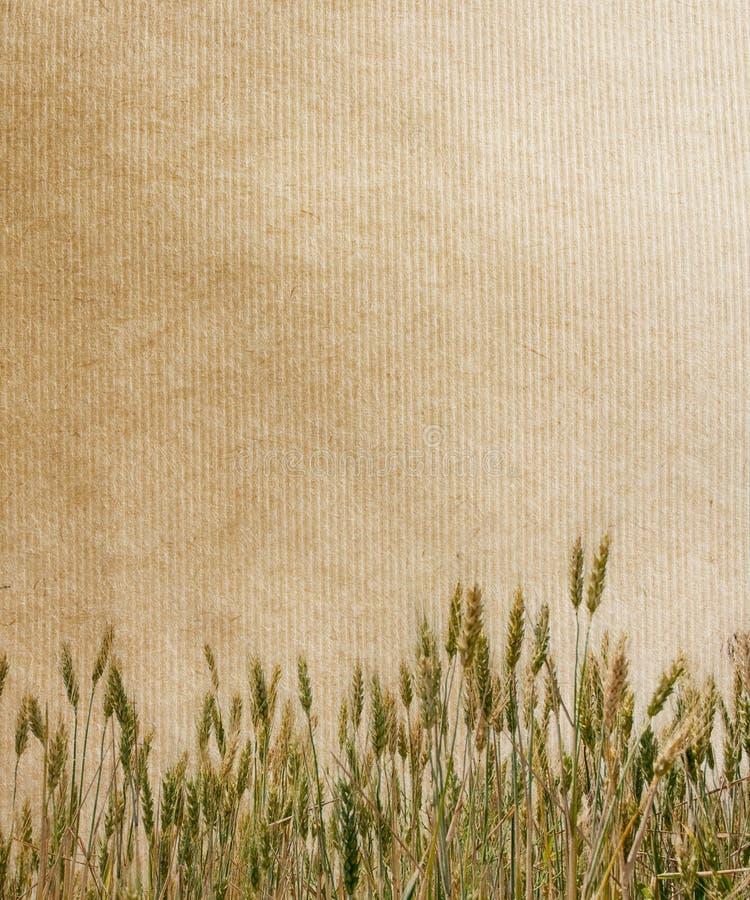 Uitstekende document texturen. stock foto