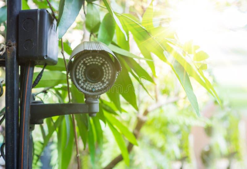 Uitstekende filter bij veiligheidscamera het hangen in het park dicht omhoog stock afbeelding