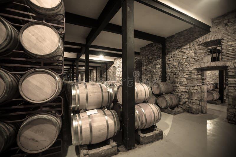 Uitstekende foto van wijnmakerij met vele vaten royalty-vrije stock afbeeldingen