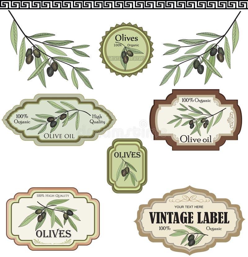 Uitstekende geplaatste olijfetiketten. Vectorhand getrokken schetsinzameling stock illustratie