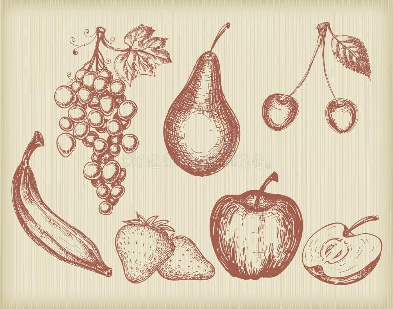 Uitstekende geplaatste vruchten vector illustratie