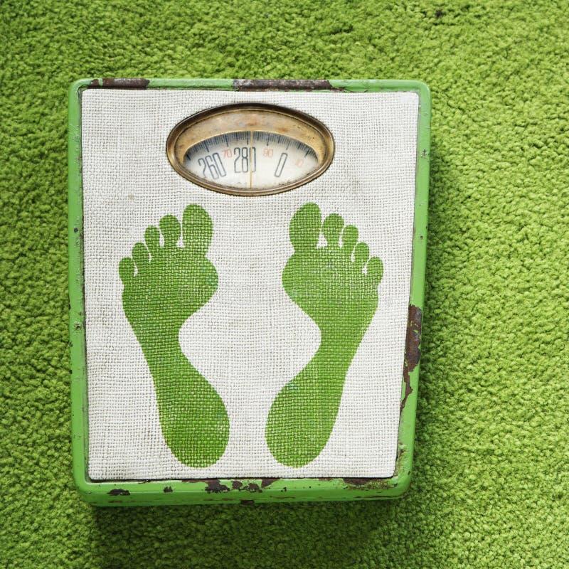 Uitstekende gewichtsschaal. stock afbeelding