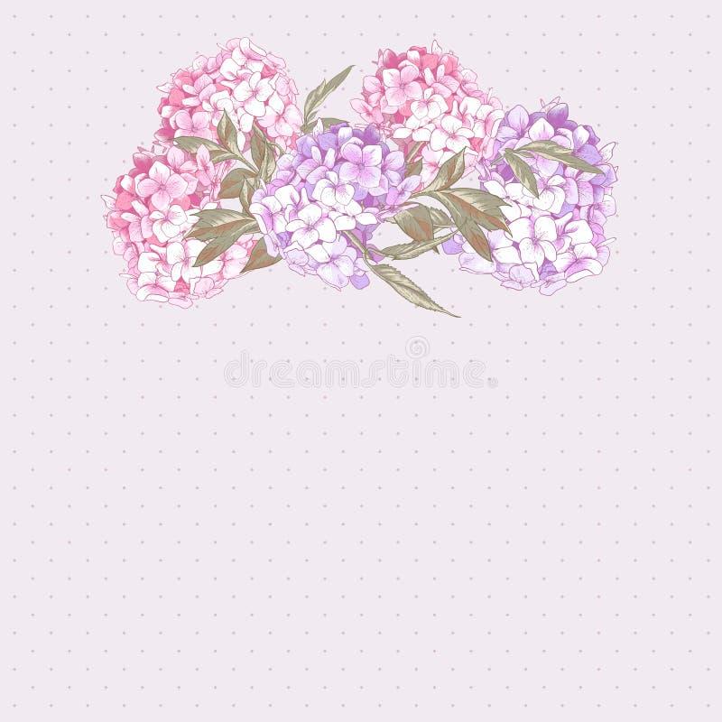 Uitstekende Groetkaart met Hydrangea hortensia en Pioenen royalty-vrije illustratie
