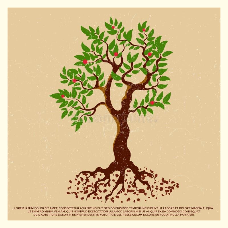 Uitstekende grungeaffiche met de boom van het bloesemfruit stock illustratie