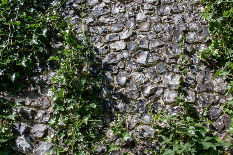Uitstekende het patroonachtergrond van de steenmuur met groene installaties op het royalty-vrije stock foto
