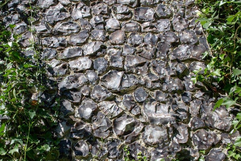 Uitstekende het patroonachtergrond van de steenmuur met groene installaties op het stock foto's