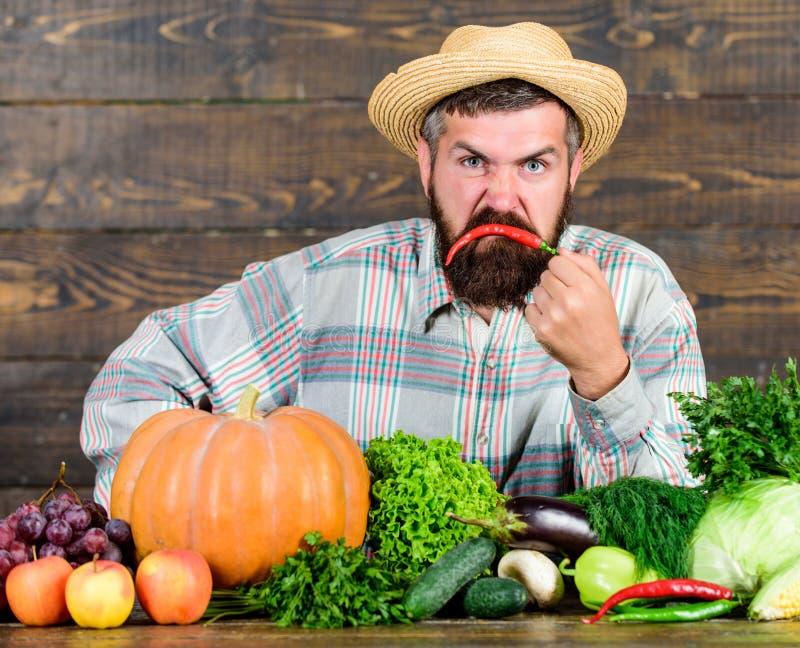 Uitstekende kwaliteitsgroenten Mens met baard trots van zijn houten achtergrond van oogstgroenten Landbouwer met organisch stock afbeelding