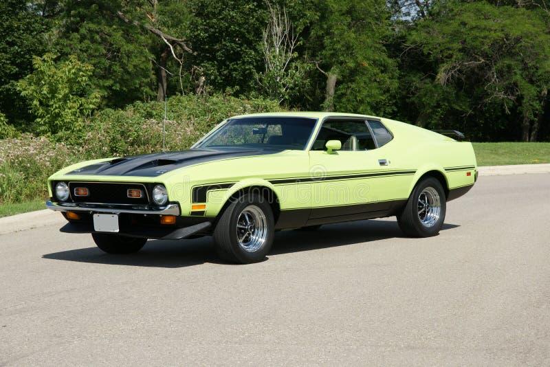 Uitstekende Mustang royalty-vrije stock foto's
