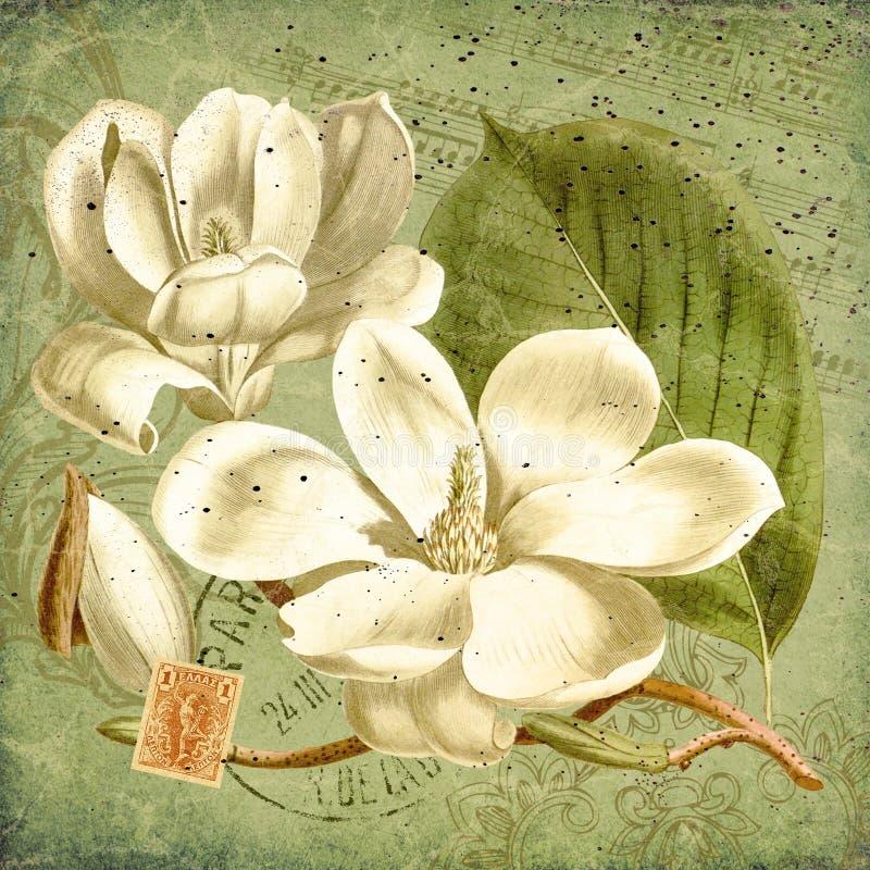 Uitstekende Pioen Bloemenillustratie - Antieke Stijlcollage Art Print - Bladmuziek - Franse Efemere verschijnselen royalty-vrije illustratie