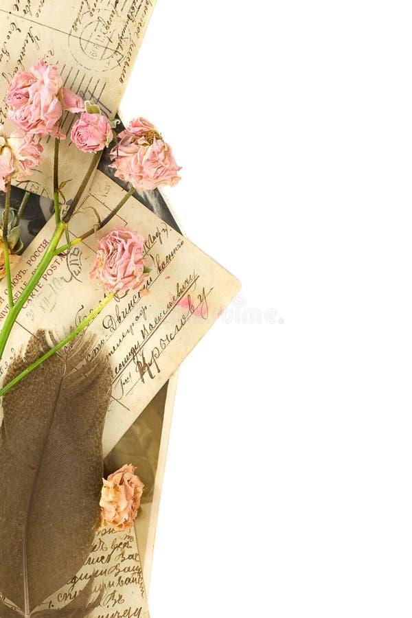Uitstekende prentbriefkaaren, pen en droge rozen royalty-vrije stock fotografie