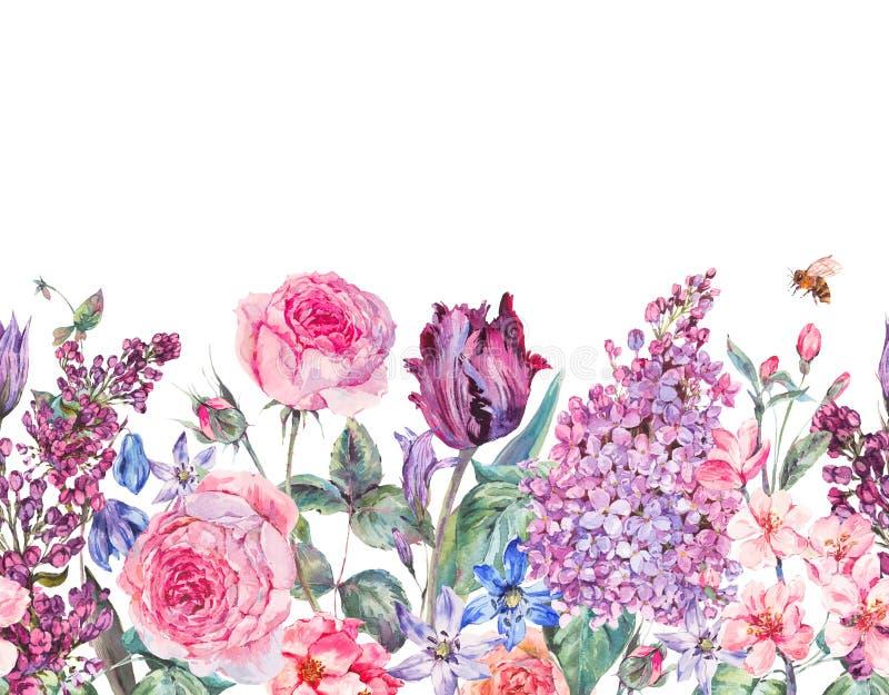 Uitstekende purpere bloemen de lente naadloze grens van de tuinwaterverf stock illustratie
