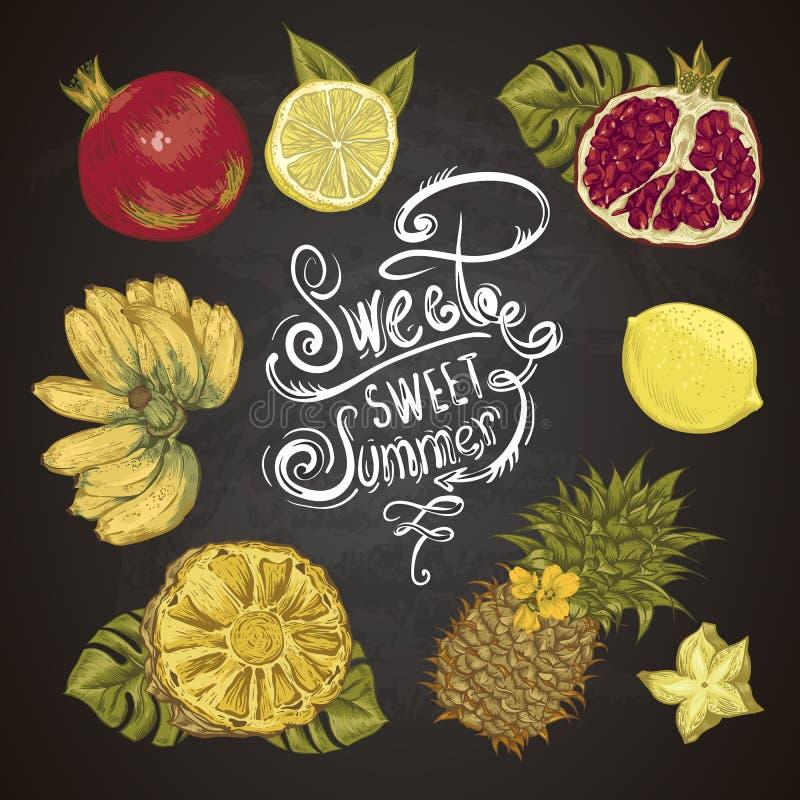 Uitstekende Reeks van Tropisch Fruit op het Bord stock illustratie