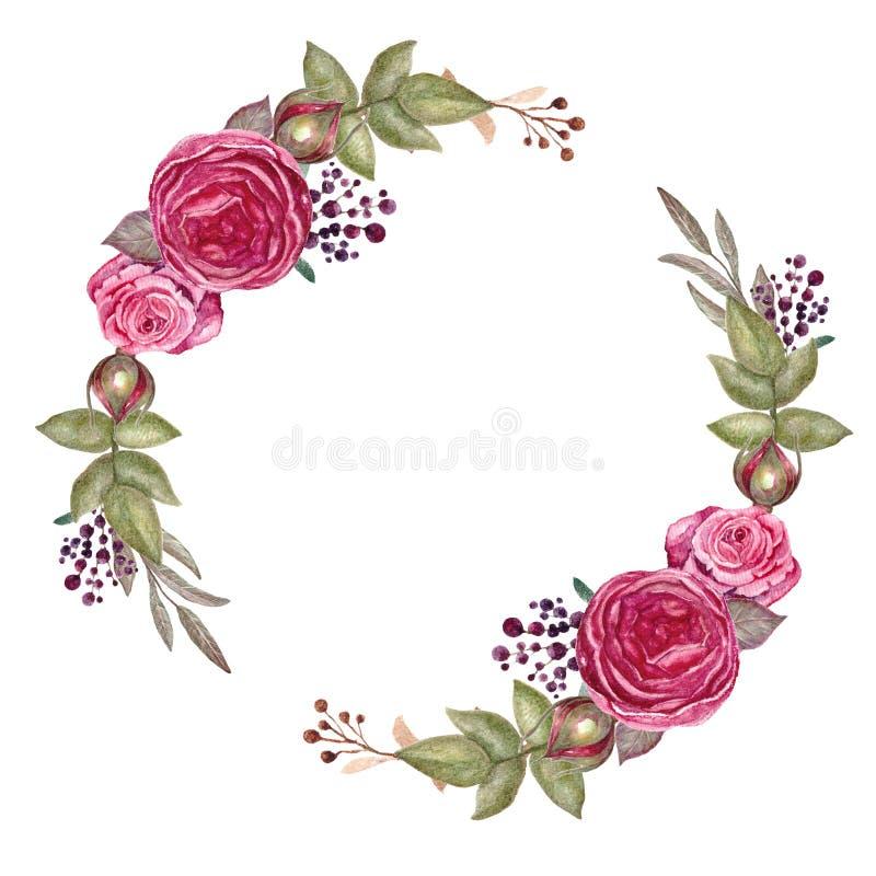 Uitstekende rode rozenkroon, waterverf bloemenkader, realistische bloemenillustratie Succulente botanische plaat - verlaat cactus vector illustratie