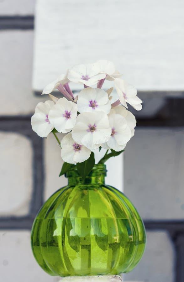 Uitstekende ronde vaas witte floxxen royalty-vrije stock afbeelding