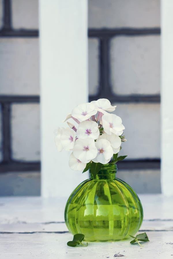 Uitstekende ronde vaas witte floxxen stock foto's