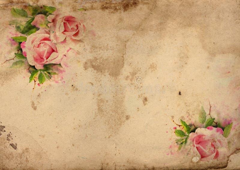 Uitstekende rozen sjofele elegante achtergrond royalty-vrije illustratie