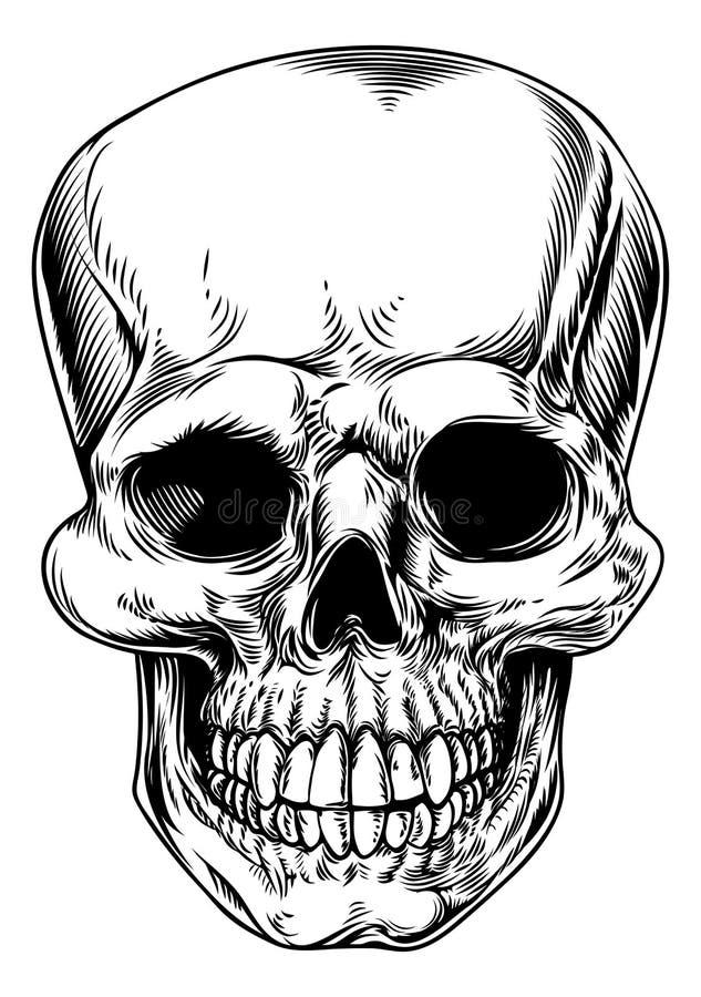 Uitstekende schedelillustratie royalty-vrije illustratie