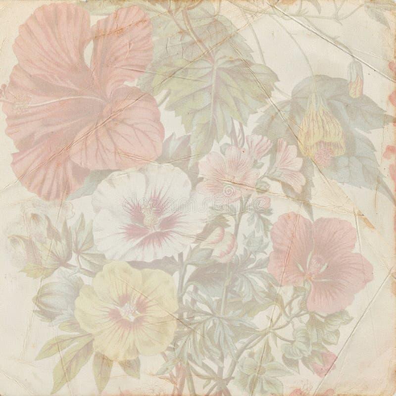 Uitstekende sjofele bloemdocument textuur stock illustratie