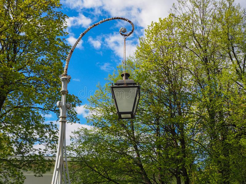 Uitstekende straatlantaarn tegen een achtergrond van tot bloei komende boom en blauwe hemel stock foto's