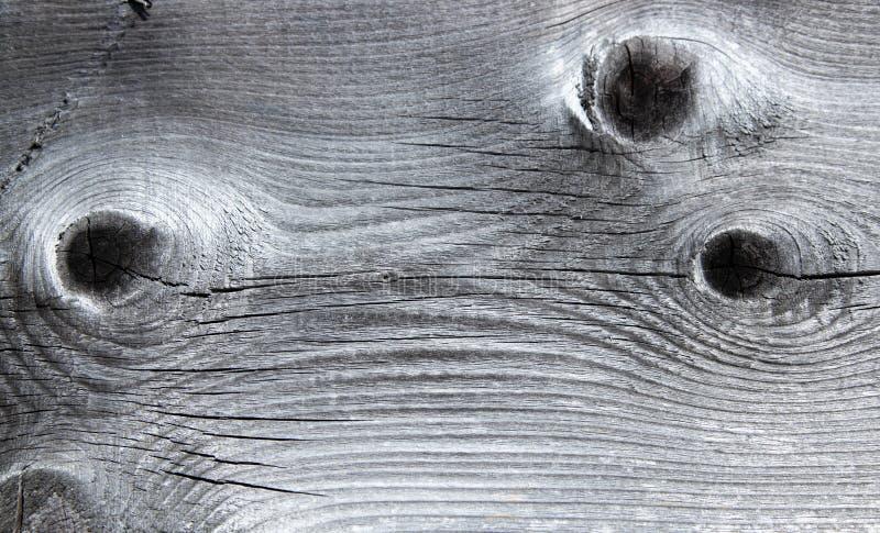 Uitstekende textuur van natuurlijke houten grijze plank met drie sporen van knopen Achtergrond royalty-vrije stock afbeeldingen