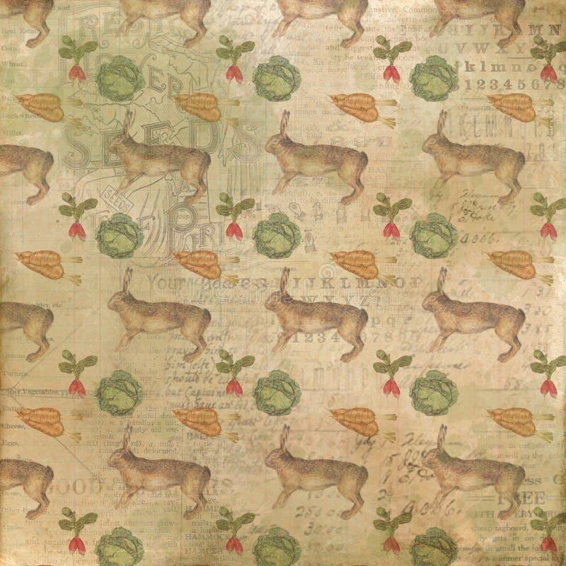 Uitstekende Tuinachtergrond - Collagedocument - Konijn - Sla - Wortelen - Bieten - het Tuinieren - Zaden - Tuinbouw royalty-vrije illustratie