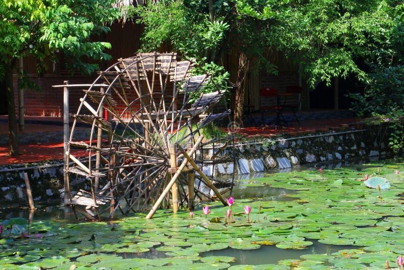 Uitstekende van de het wielvijver van het bamboewater de lotusbloembloemen, Vietnam stock fotografie