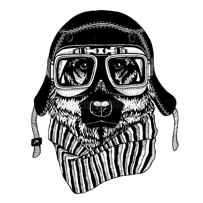 Uitstekende vectorbeelden van honden voor t-shirtontwerp voor motorfiets, fiets, motor, autopedclub, aeroclub stock illustratie