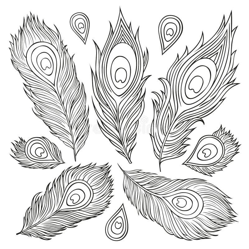 Uitstekende Veer vectorreeks. Hand-drawn illustratie. vector illustratie