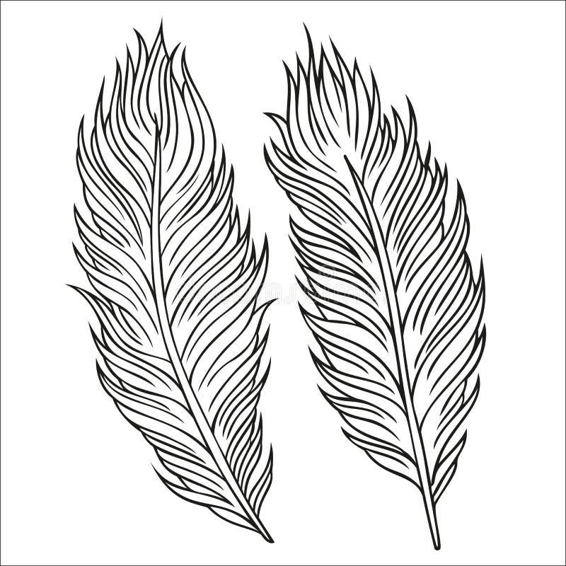 Uitstekende Veer vectorreeks. Hand-drawn illustratie. stock illustratie