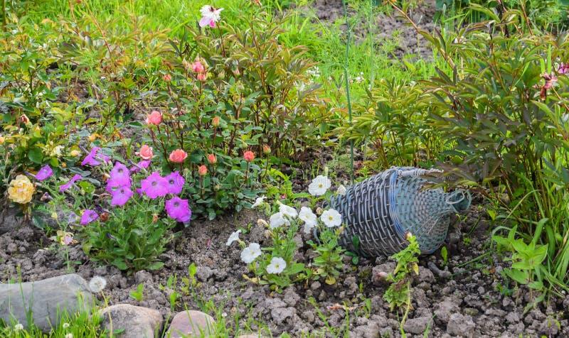 Uitstekende waterkruik in een weelderige tuin royalty-vrije stock foto's