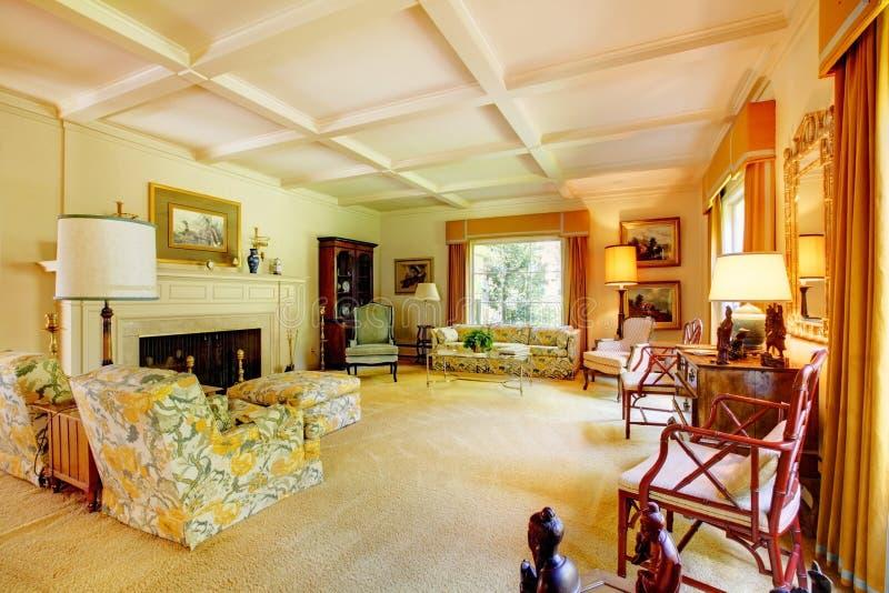Uitstekende woonkamer met decoratieve deken, meubilair en een open haard stock foto's